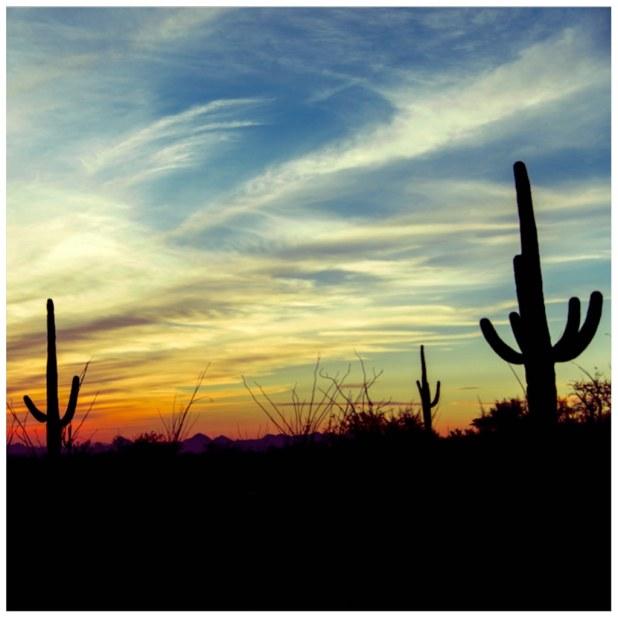 Desierto en Mexico