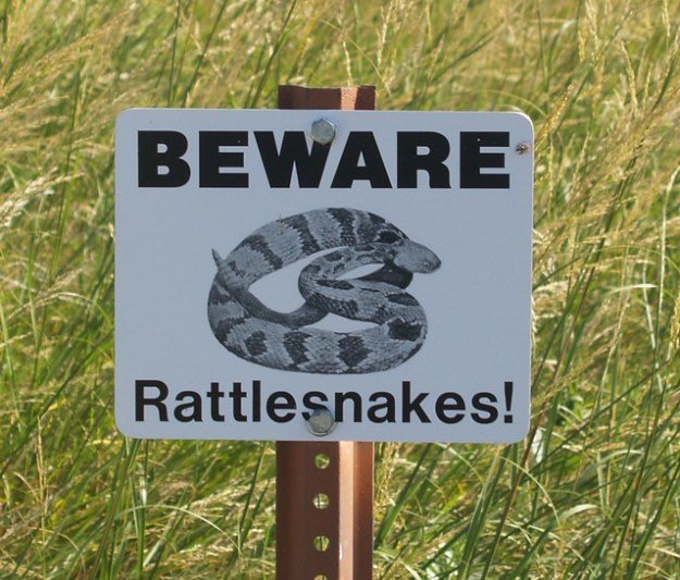 Beware Rattlesnakes!