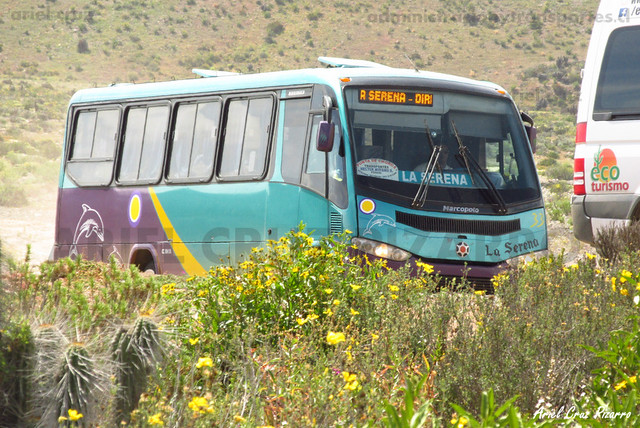 Transportes Héctor Moyano - Quebrada de Los Choros - Marcopolo Senior / Mercedes Benz