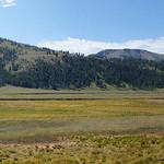 82-Yellowstone.Lamar Valley