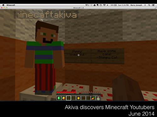 MinecrafttheSwedishToy.017