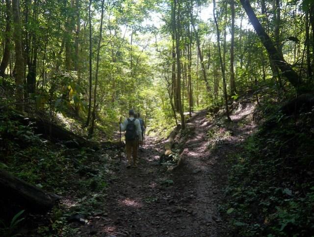 The path splits, we took the one towards the Karen village of Ban Muang Phaem