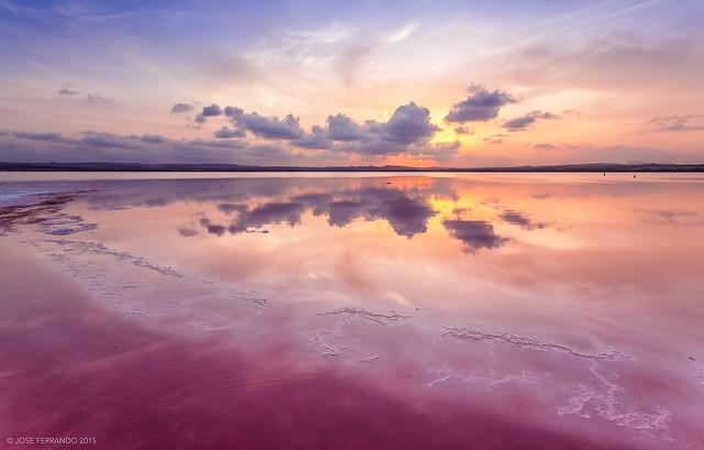 Una laguna muy salada - Salinas de Torrevieja