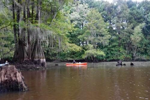 Sparkleberry Swamp with LCU-45