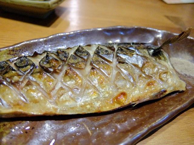 挪威鯖魚,肉頗多也肥美