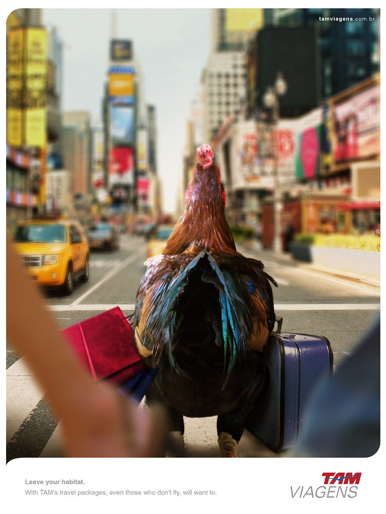 TAM Viagens Travel Packages - Leave your habitat Chicken