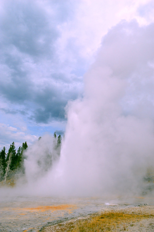 Geyser Hill Yellowstone