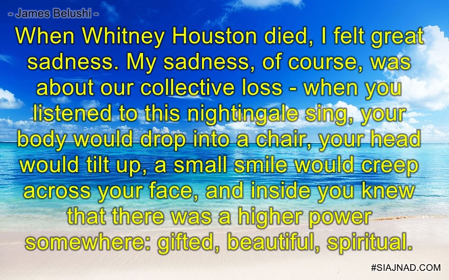 When Whitney Houston died I felt great sadness My sadness of course was
