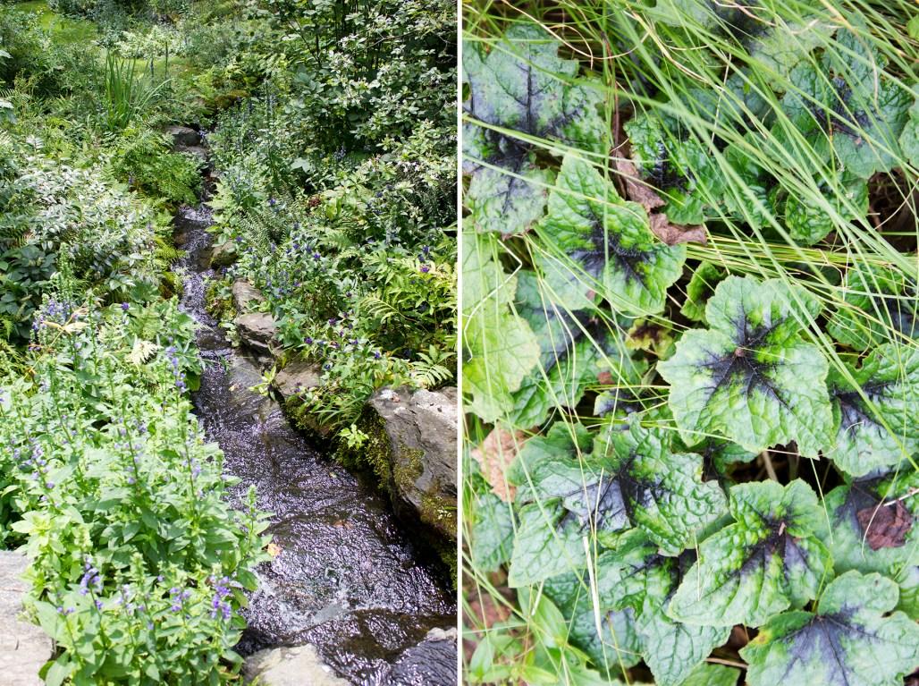 mt-cuba-gardens-delaware-leaves-water