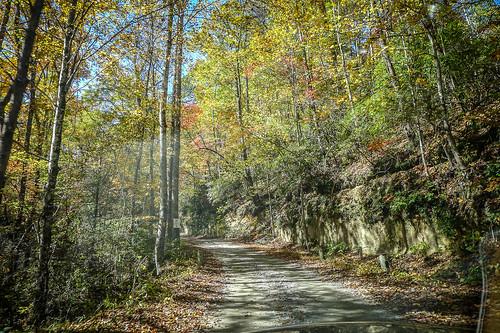 Horsepasture Road-002