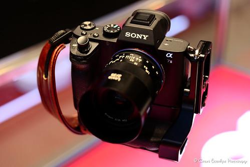 Leica SL + 24-90mm Zoom OOC JPEG