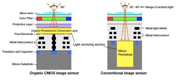 Organic-sensor-img