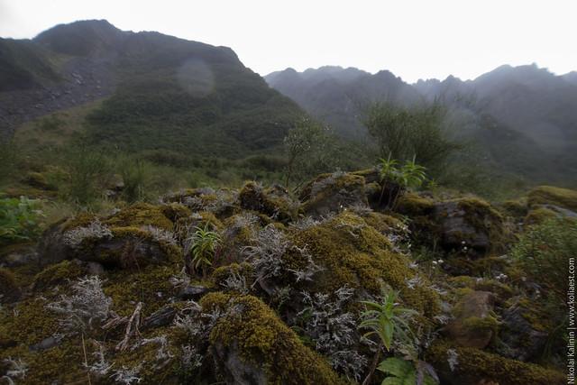 NZ_day9-67