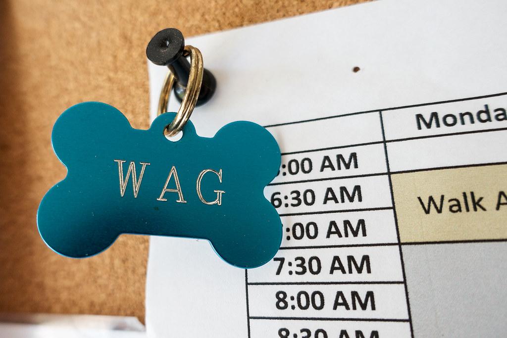 WAG dog tag.