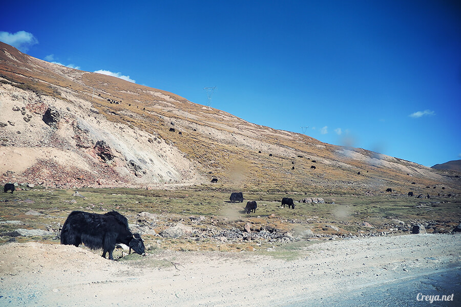 2015.12.29 | Tibet 西藏踢北去 | 身心大突破的公路之旅,從拉薩一路向東到林芝(上集 - 米拉山口與如廁記) 07.jpg