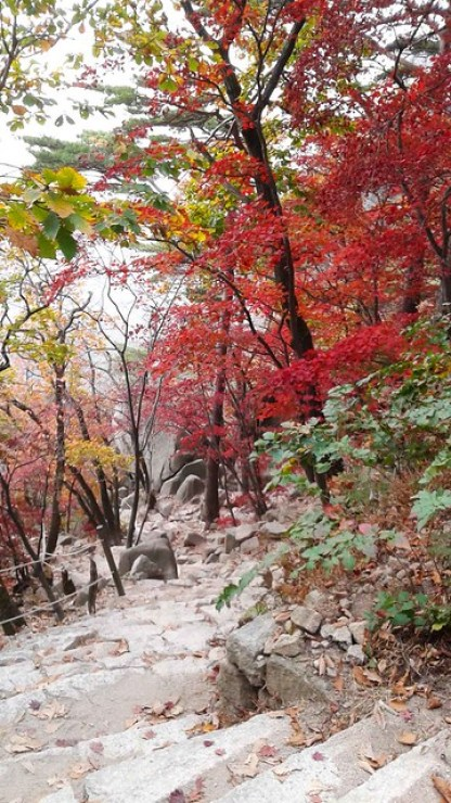 Fall at Bukhansan