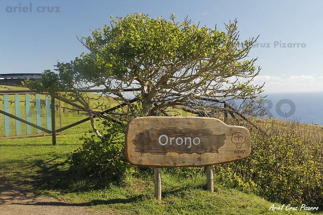 Orongo - Isla de Pascua