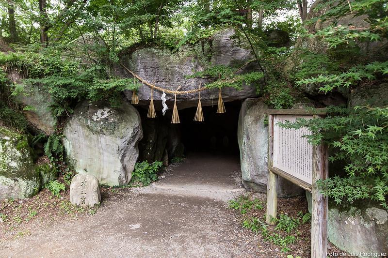 Granja de Wasabi Daio-46