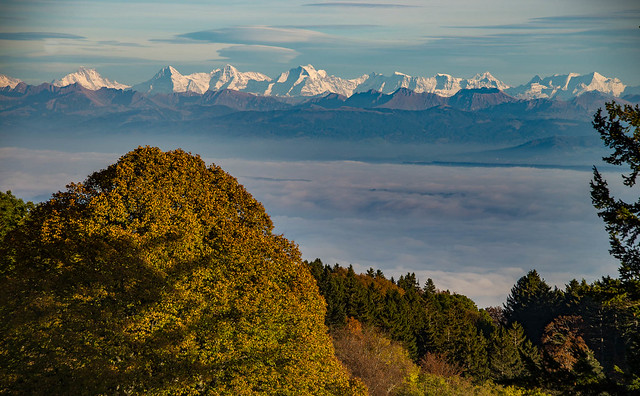Alps 04
