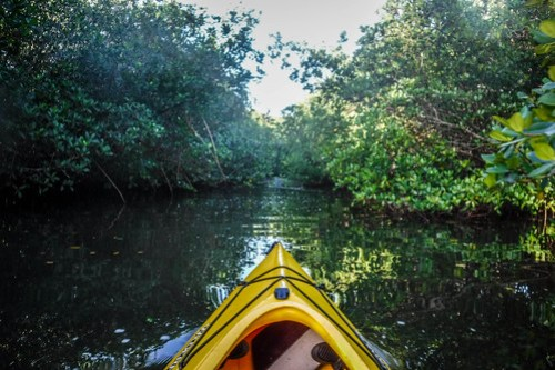 Black Friday Paddling on the Indian River-006