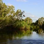 02 Viajefilos en Australia, Kakadu NP 084