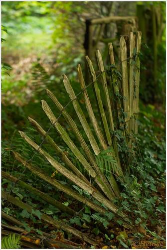 Fence (7D032149)
