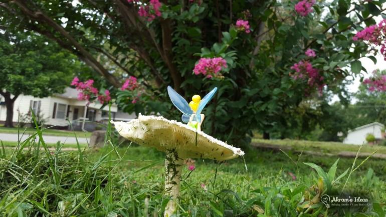 Mushroom Fairy 005