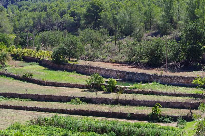 Terroir agricole