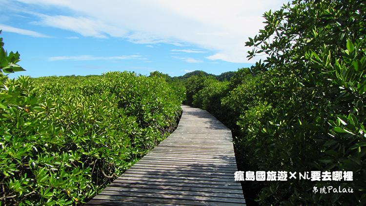 93日暉國際度假村紅樹林步道