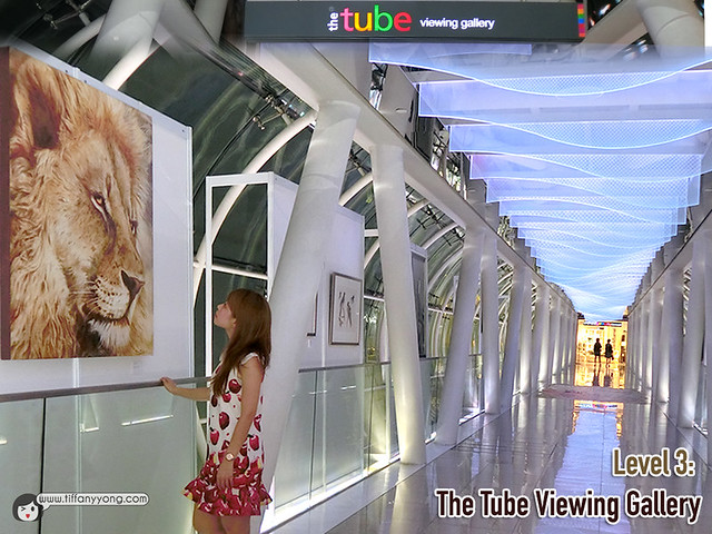 The Tube Viewing Gallery Mandala Wildlife Orchard Gateway