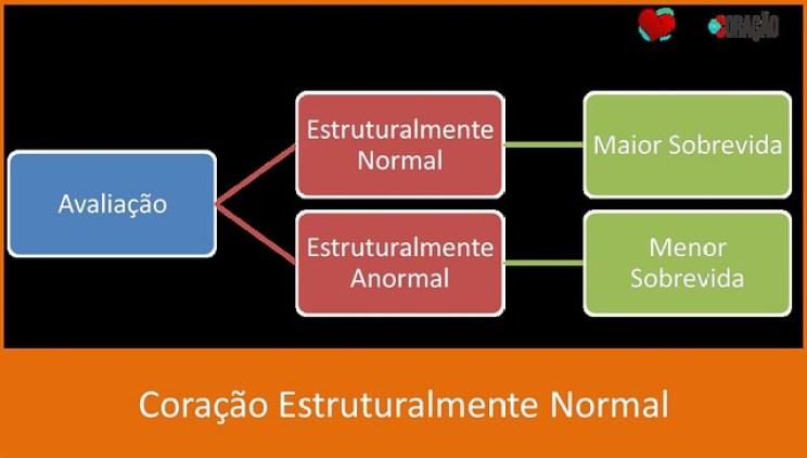 Coração Normal