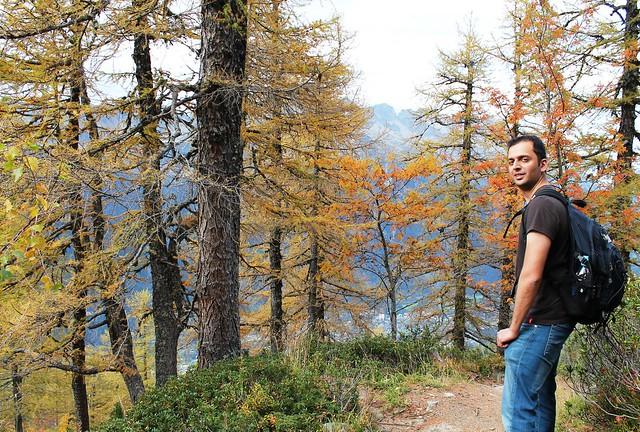 travpacker forest trail chamonix from plan de l'aiguille du midi