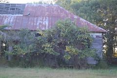030 Abandoned School