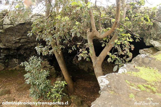 Ana Te Pahu (Cueva de los Plátanos)