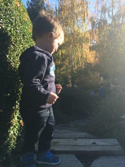 James in the magic backyard