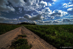 """Der lange Weg zum """"final step"""""""