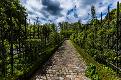 Promenade Verte #02 Watermael-Boitsfort