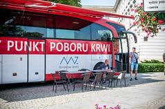 48072837831 3deb7c1206 m - XIII Radomski Piknik Strażacki (foto)