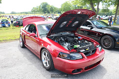 American Muscle Mustang Show 2019_171