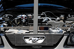 American Muscle Mustang Show 2019_179