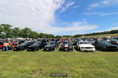 American Muscle Mustang Show 2019_186