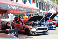 American Muscle Mustang Show 2019_095