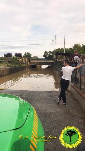 Alluvione Luglio 2019