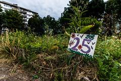 Potager Urbain #14 Velt Koekelberg