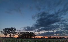 August evening sky