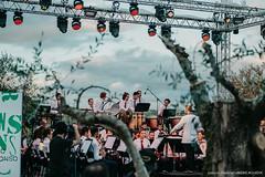 Dia 8 - Orquestra Filármonica Gafanhense-8