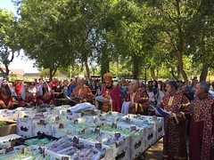"2019 Blessing of the Grapes • <a style=""font-size:0.8em;"" href=""http://www.flickr.com/photos/124917635@N08/48572338941/"" target=""_blank"">View on Flickr</a>"