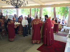 """2019 Blessing of the Grapes • <a style=""""font-size:0.8em;"""" href=""""http://www.flickr.com/photos/124917635@N08/48572488082/"""" target=""""_blank"""">View on Flickr</a>"""
