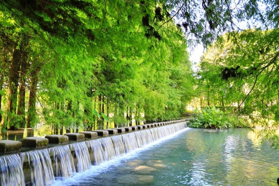 [花蓮旅遊]雲山水|落羽松美景&夢幻湖光山色~免門票必遊景點.湖畔美得像幅畫 @VIVIYU小世界