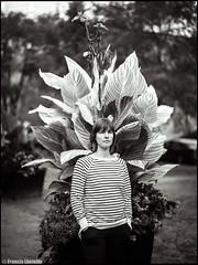 Portrait with stripes